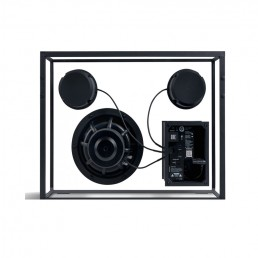 transparent speaker large black black wires rear