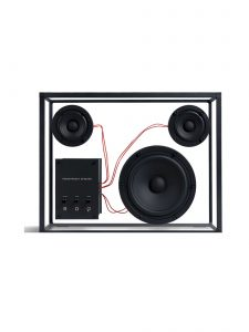 transparent speaker large black red wires front
